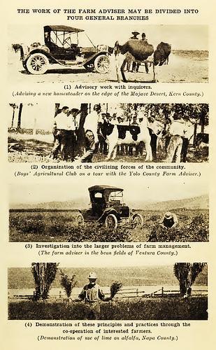 Farm Advisor duties in 1915