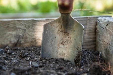 hand trowel in dirt